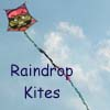 Link to Raindrop Kites website